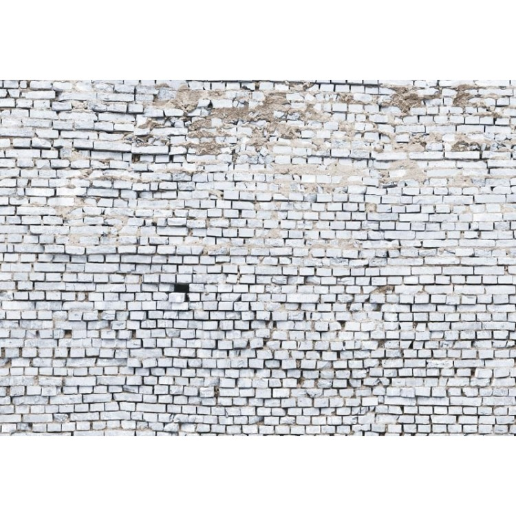 fotomurale komar old white bricks