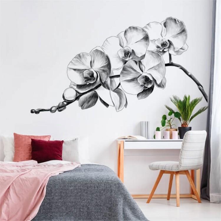 Orchidee B&W