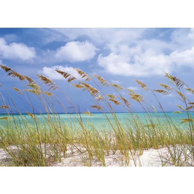 Fotomurale Ocean Breeze | cod. 8-515