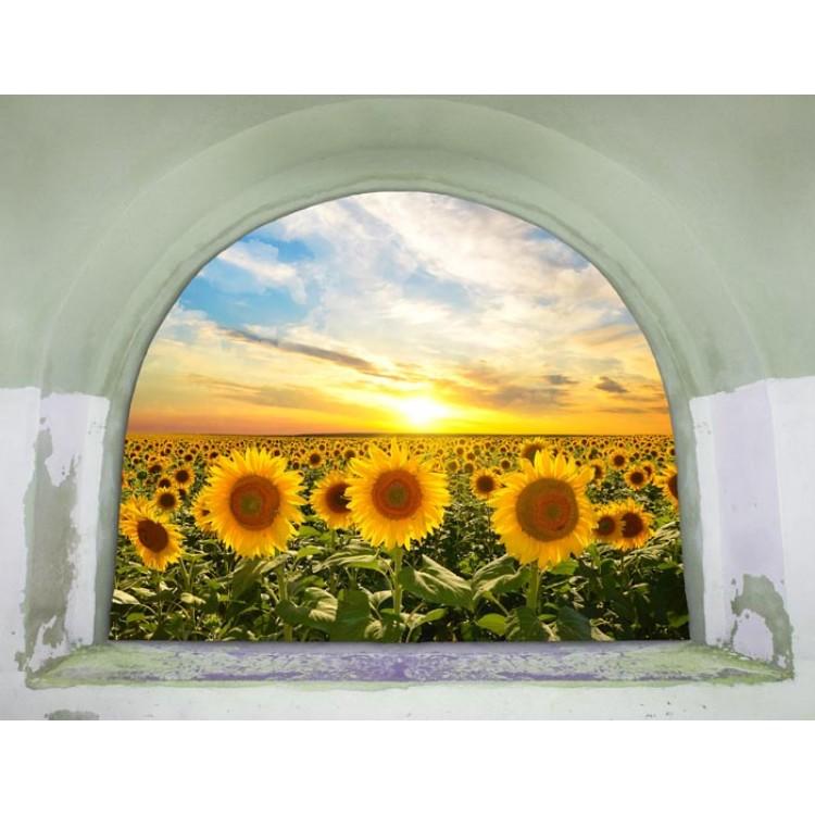 Trompe l'Oeil | Arco su Campo di Girasoli