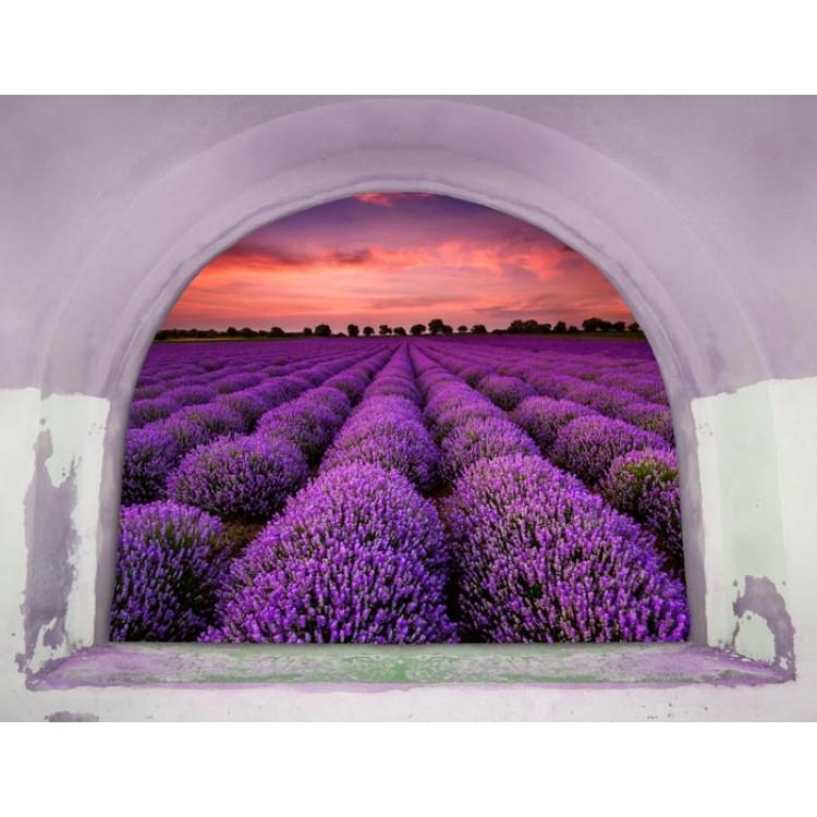 Trompe l'Oeil | Arco sul campo di lavanda