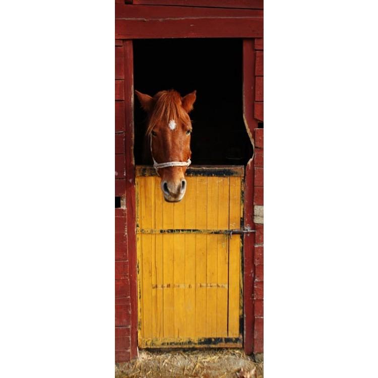 adesivo per porta horse inside