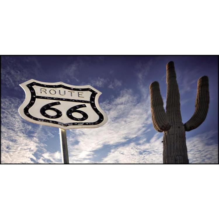 Cactus Route 66   Quadro America su tela