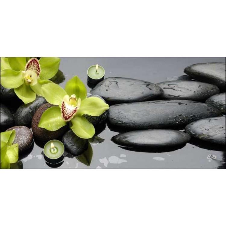 Quadro su tela Orchidee Verdi