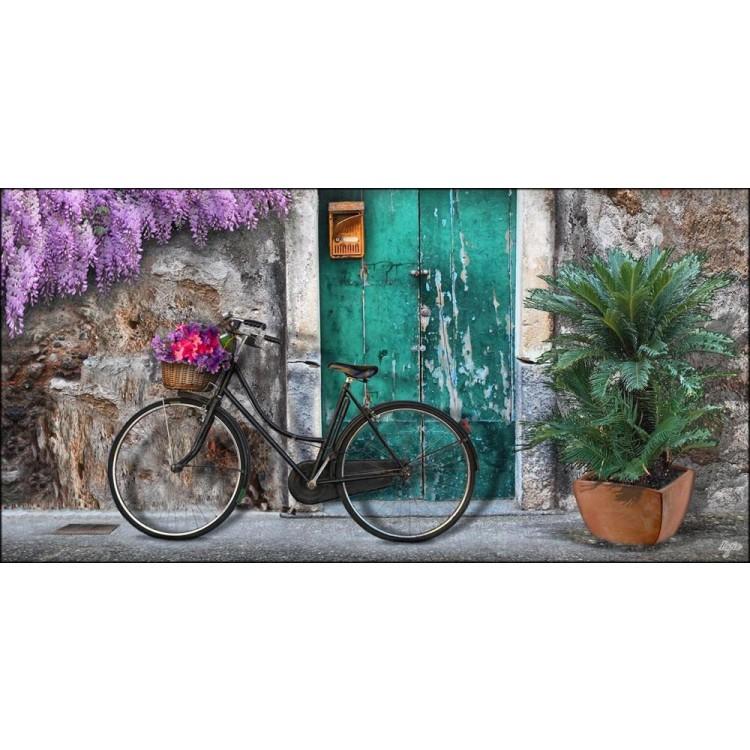 quadro bicicletta