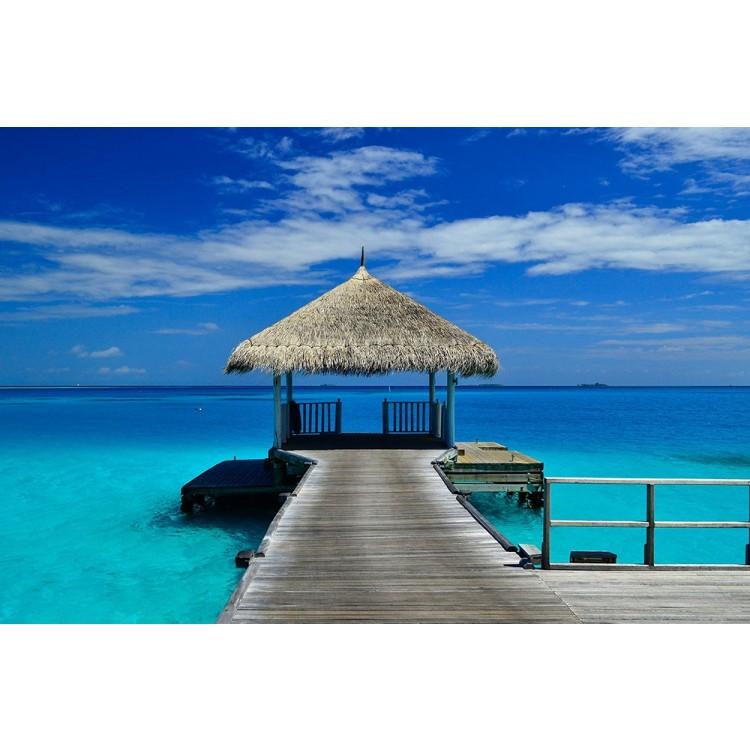 Fotomurale Dentro i Tropici