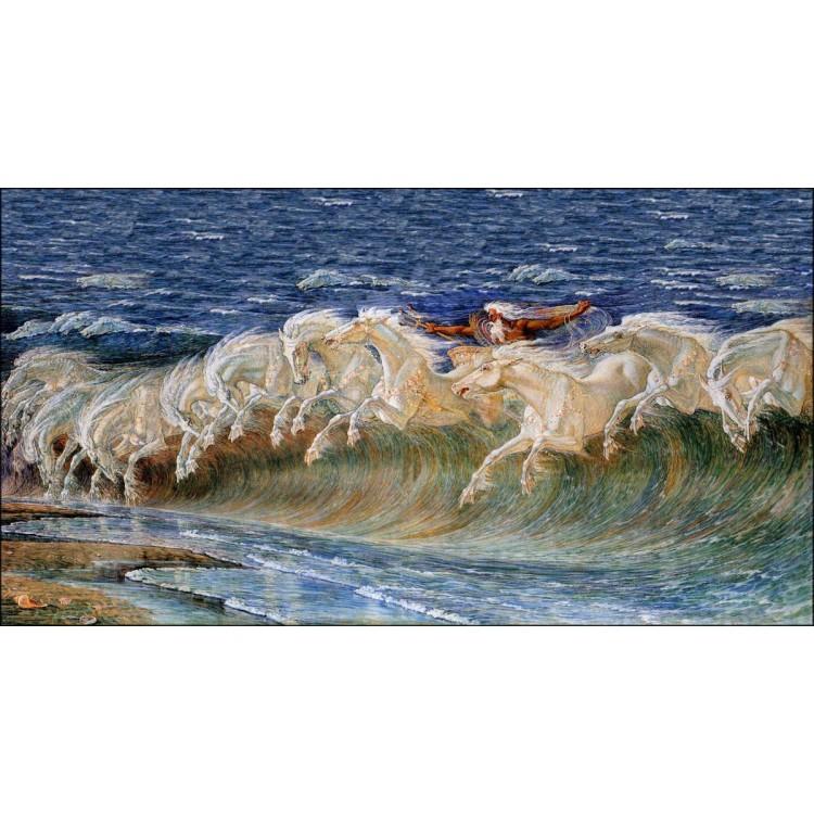 Cavalli di Nettuno - Crane