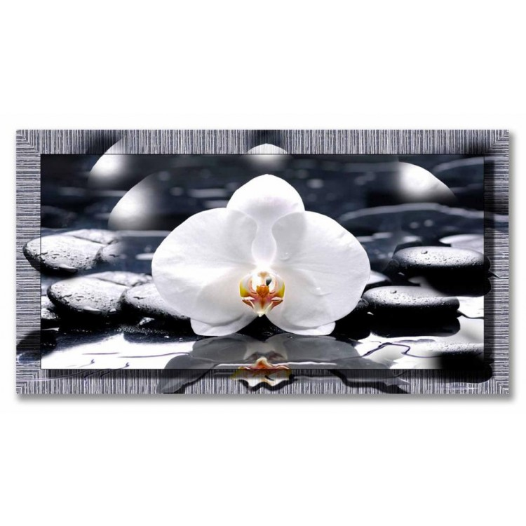 Quadro in tela con cornice Orchidea Bianca Argento