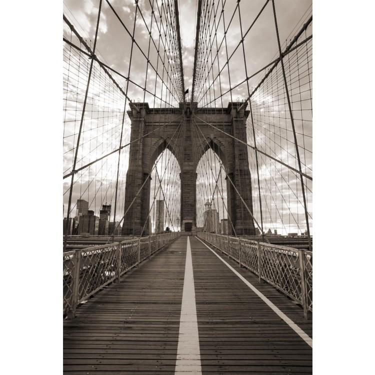 Fotomurale ponte