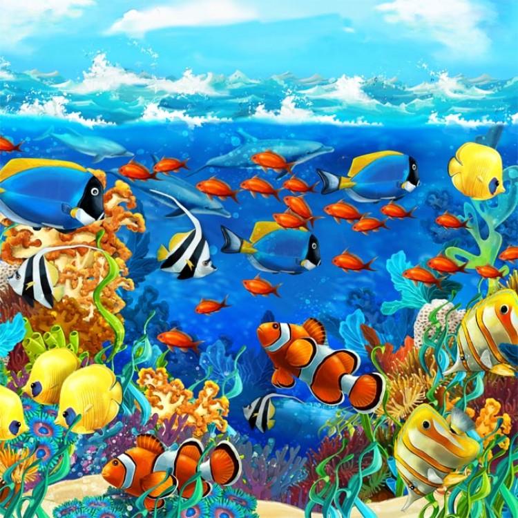 adesivo scaffale acquario