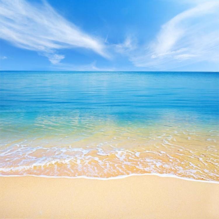 adesivo scaffale spiaggia