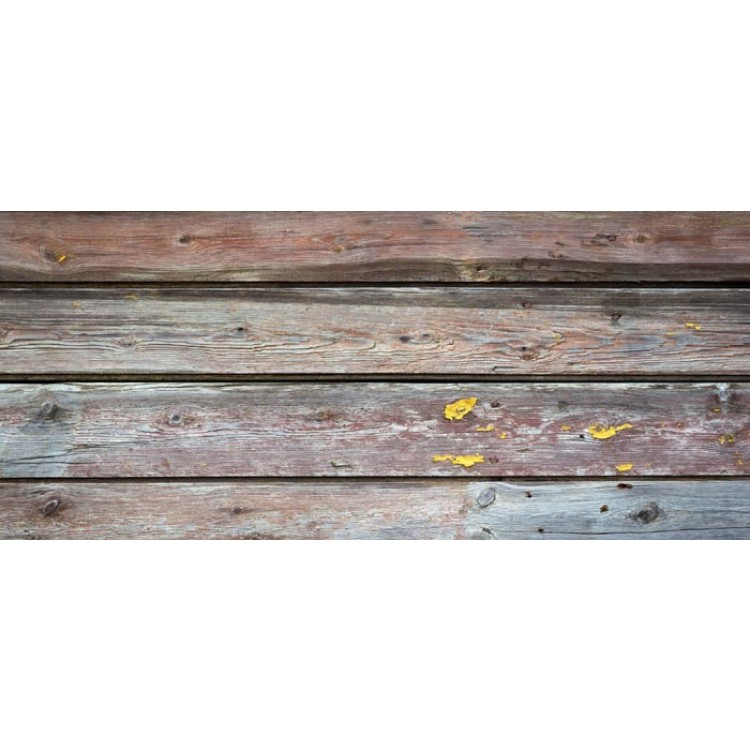 Dreamy fotomurali legno naturale