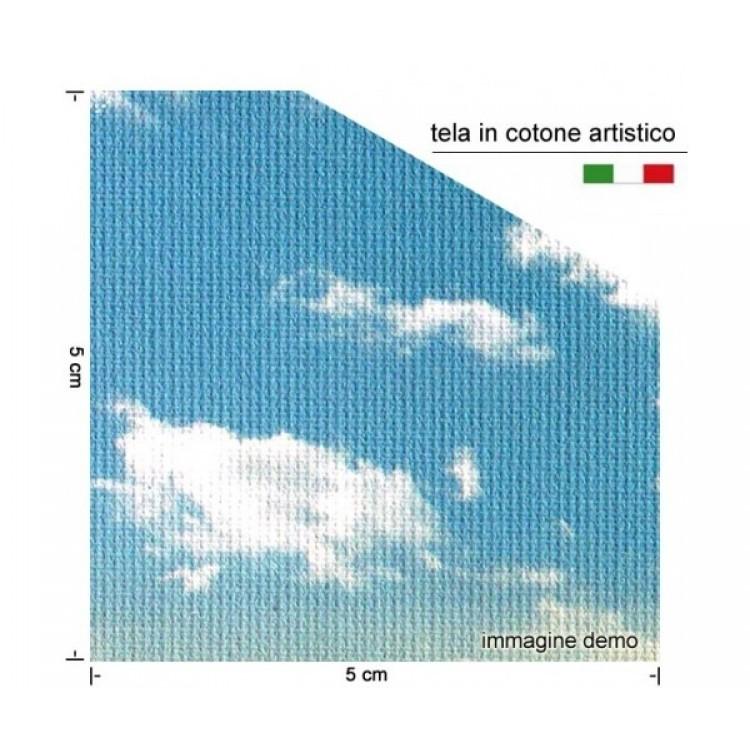 Dettaglio quadro tela di cotone