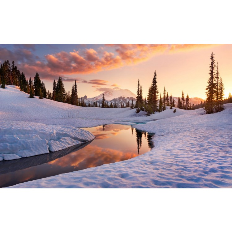 fotomurale Inverno